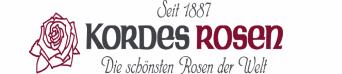 Strauchrose - W. Kordes' Söhne®